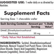 DMAE (Dimethylaminoethanol) - 50 mg Chewable Wafers - INGREDIENTS